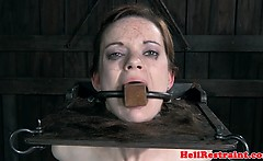BDSM bondage sub whipped and flogged