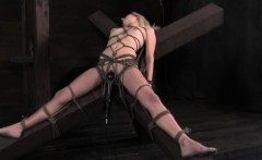 Shrimp tied submissive gets dominated