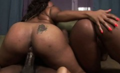 Big Booty Chocolate Beauties Riding On Dick In Threesome
