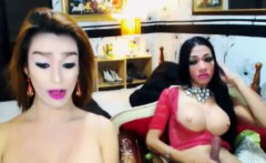 Gorgeous Shemales Fuck Each Other Good