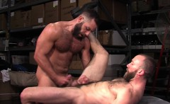 Hairy buff bears spunk