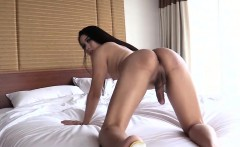 Stunning ladyboy Kartoon anal smashed in many positions