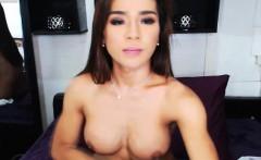 Pretty Amateur Tranny Babe Masturbating