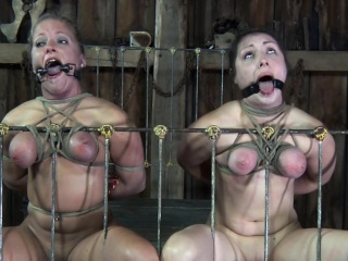 Restrained subs dicksucking while mouth gaped