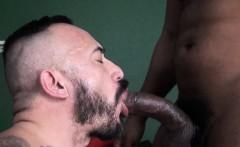 Ebony bear sucking and fucking white lover