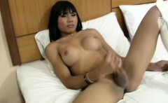 Ladyboy with huge globes sucks in POV and jerks till cumshot