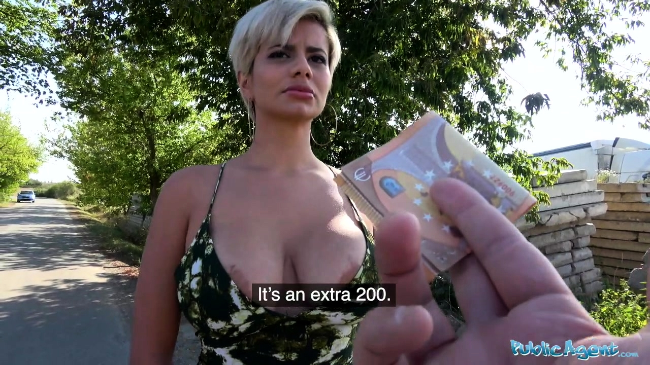 Czech Public Agent Anal