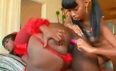 Lesbian Afro Huge Ass Slut Taking Toy In Cunt